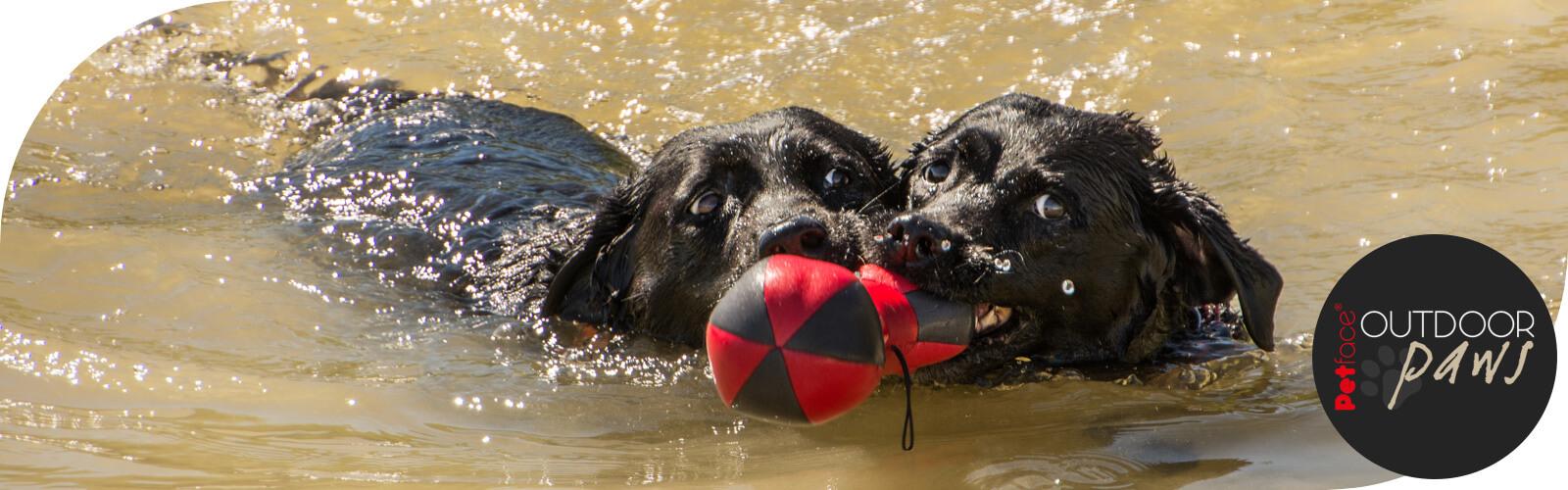 Outdoor Paws - Speelgoed voor honden